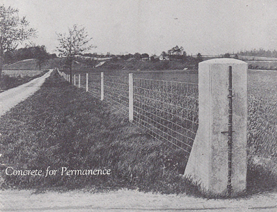 concrete posts along lane with field