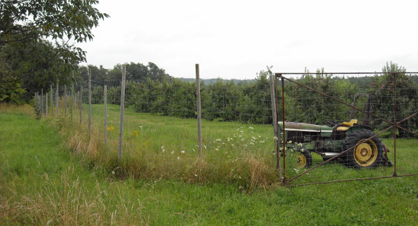 How To Choose The Right Coating For Woven Wire Fencing