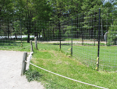 woven wire fence at Franklin Park Zoo