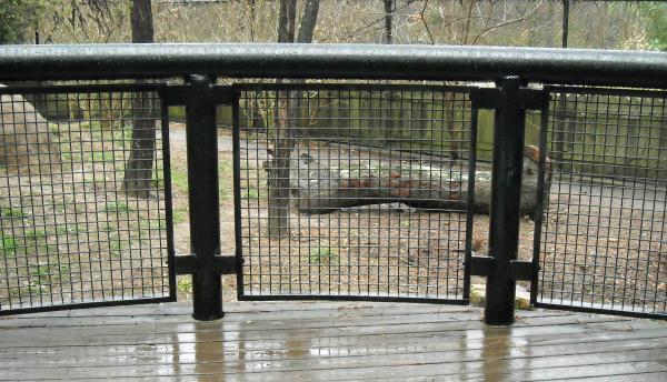 Wire Mesh Fence Panels. Wire Mesh Fence Panels V - Bgbc.co