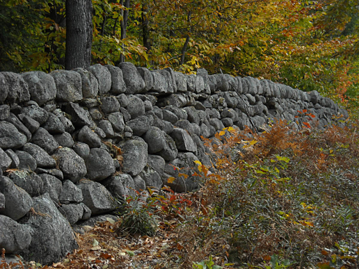 stone wall fence in autumn