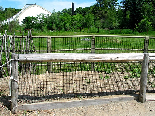 Vinyl Coated Welded Wire Mesh & Fence at Zoo New England