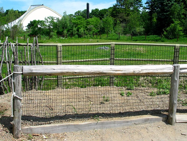 Vinyl Coated Welded Wire Mesh Amp Fence At Zoo New England
