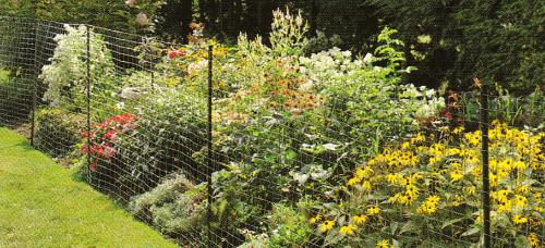 welded_wire_garden_fence-resized-600