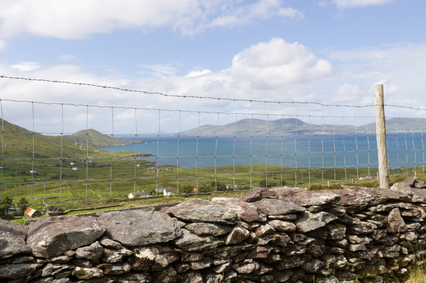 Coatings For Welded Wire Fences Vs Rust Amp Corrosion