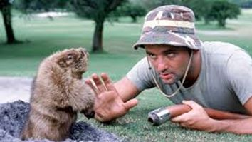 Gopher in hole with Bill Murray from film Caddyshack
