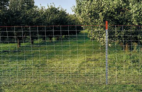 deer orchard fence   lg resized 600