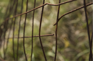 broken-fence.png