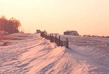 Kalinich_snowfence1.jpg