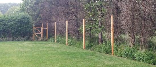 galvanized high tensile deer fence