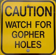 gopher holes