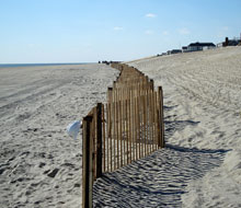 sand-fence-2.jpg