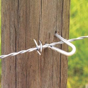 Fence Staples