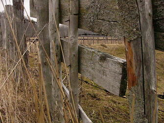 old weathered fence in paddock